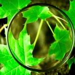 PlanetWatch - Navulpakket